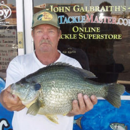 ARIZONA Reporter: Possible  World Record Sunfish Caught