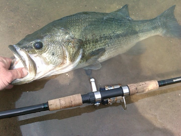 Top 10 Bass Fishing Mistakes